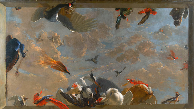 Ceiling_piece_with_birds,_by_Abraham_Busschop