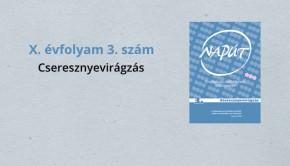 naput093-1