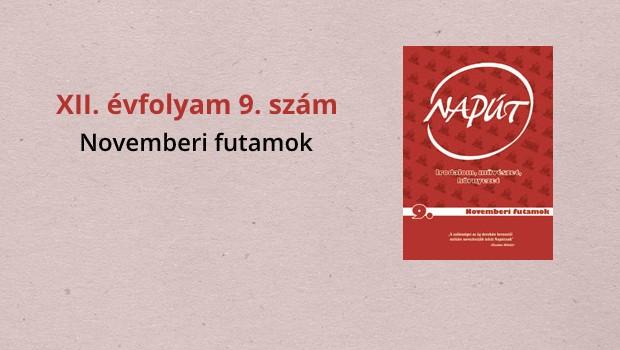 naput119-1