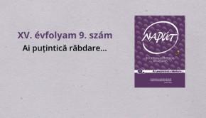 naput149-1