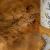 csodaszarvas (Közepes)