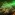 Vidéki Bianka: Zöld szem